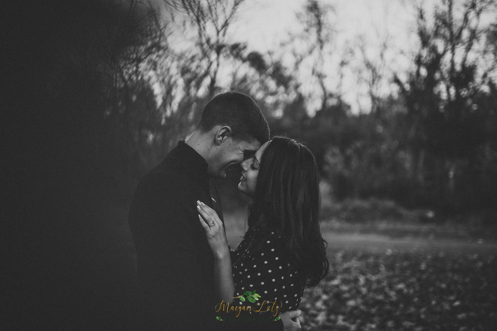 Eastern-PA-wedding-engagement-photographer-Lock-Ridge-Park-Alburtis-PA-32.jpg