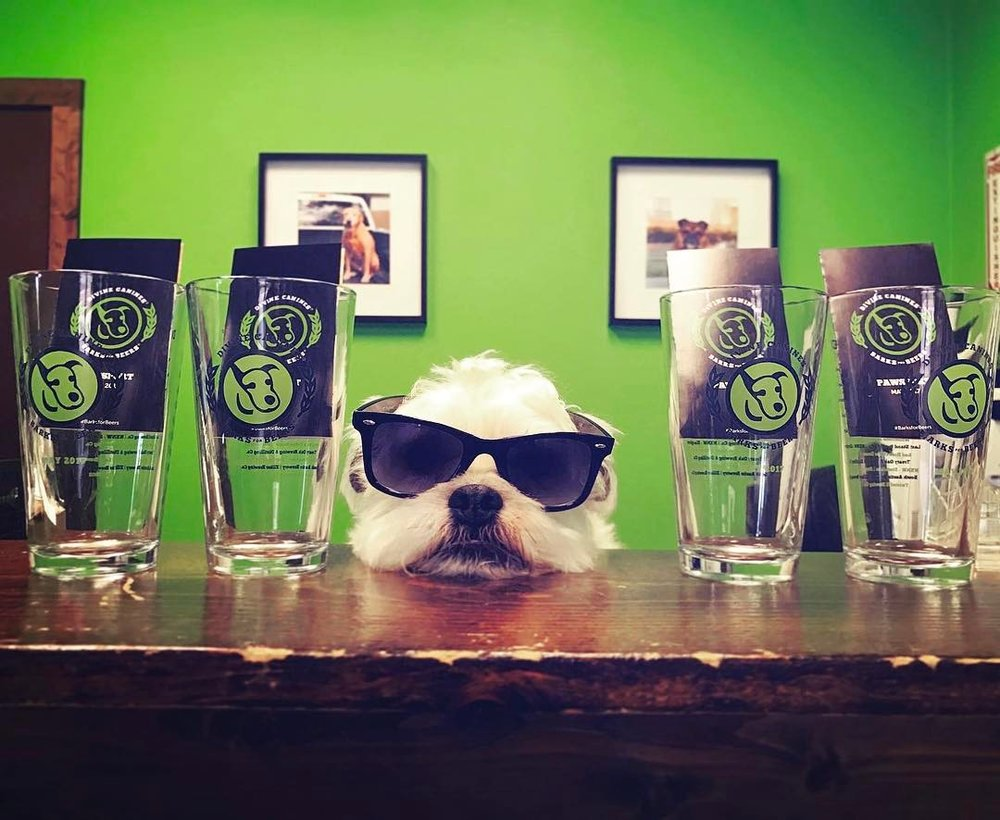 by barks for beers.jpg