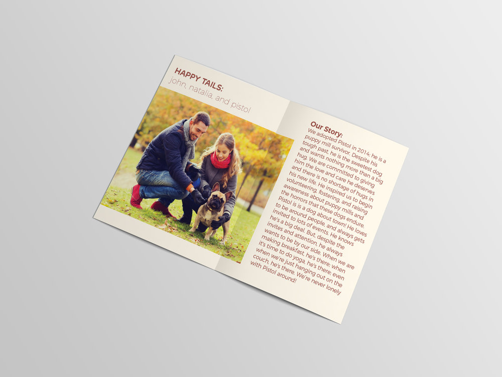 Bifold Brochure Mockup5.jpg