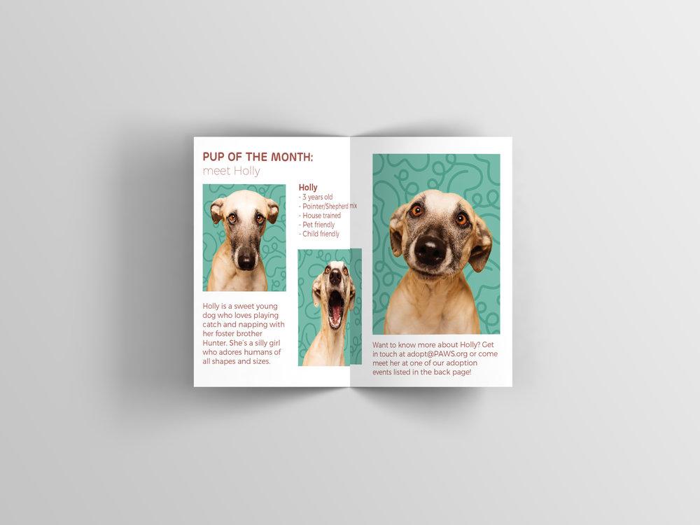 Bifold Brochure Mockup7.jpg