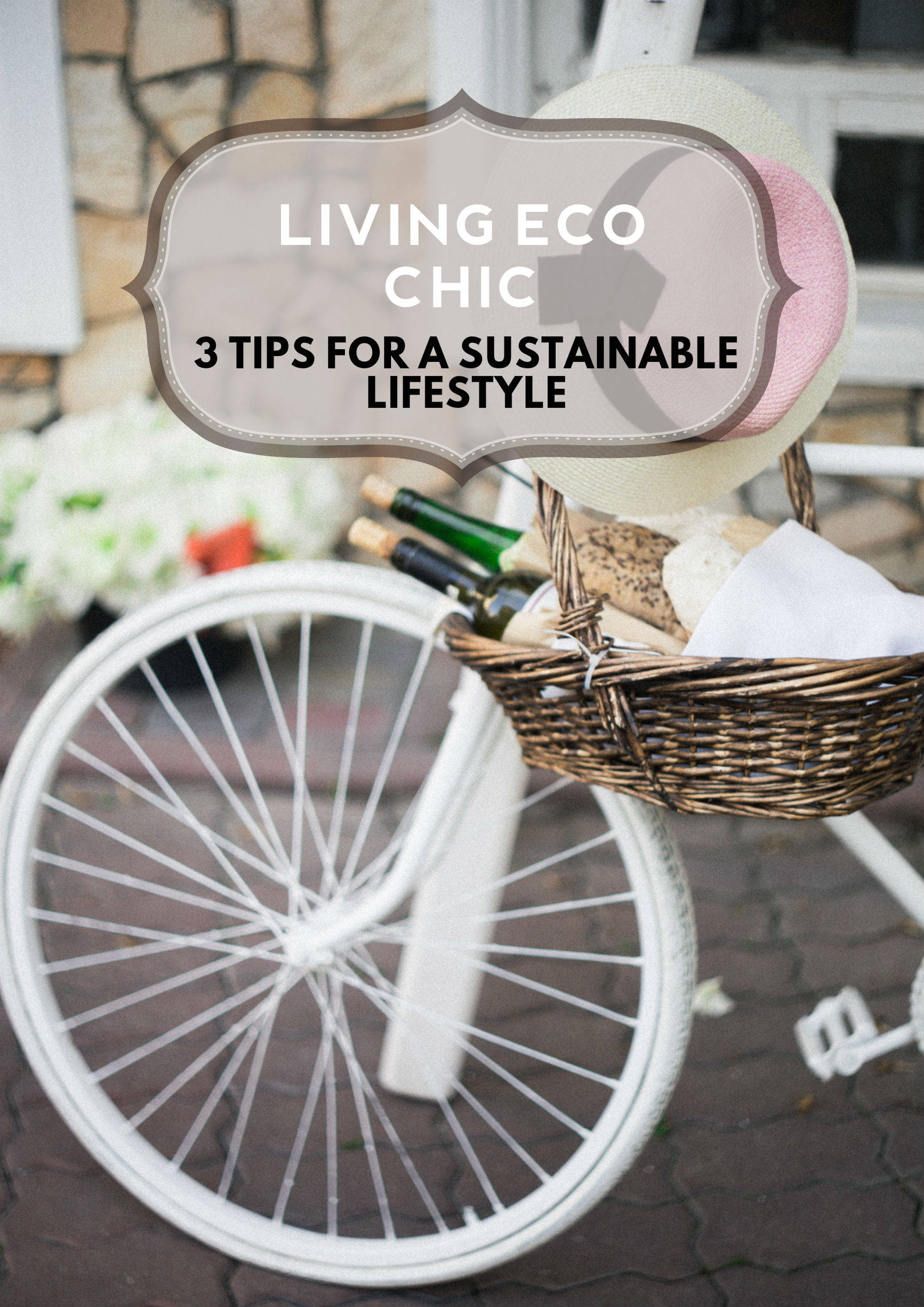 The Fresh Issue Sustainable Lifestyle Tips PINTEREST