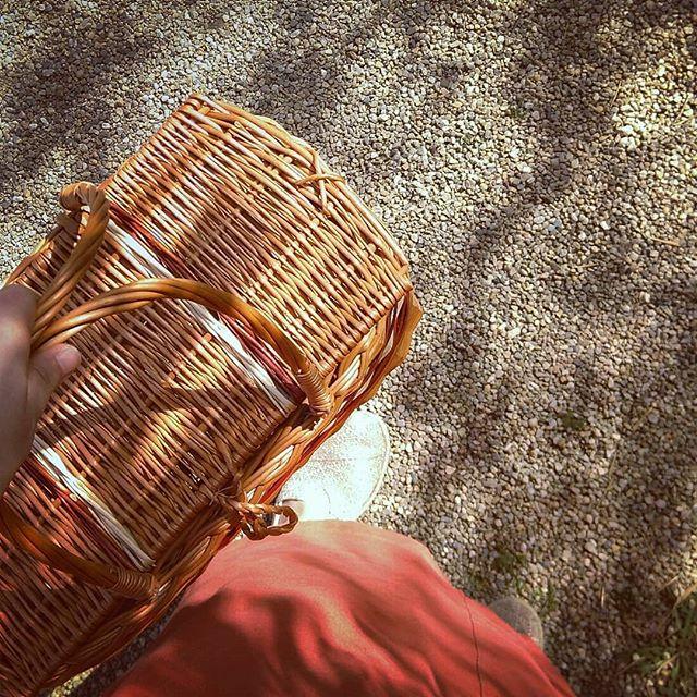 In Zukunft kommt dieser schicke Korb mit zum verpackungsfreien Einkauf 💚 Passt auch super vorne an das Fahrrad - die Sommersaison kann starten!  #wiebeideroma #handwerk #korb #fahrradkorb #minimalwaste #müllvermeidung #müllminimierung  #verpackungsfrei #öki #nachhaltig #ecofriendly #fahrradinderstadt #summerinvienna