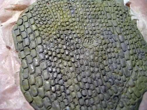 WIP_cobblestone01.jpg
