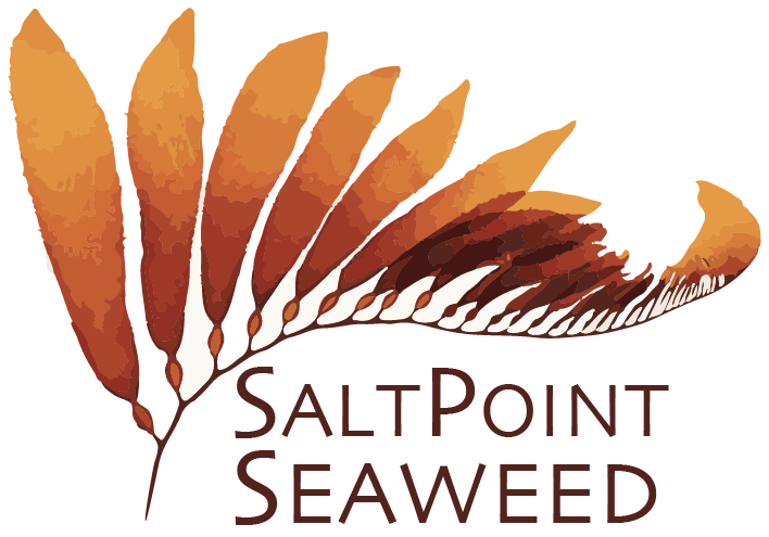 salt point seaweeds.png
