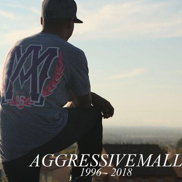 aggressivemall.jpg