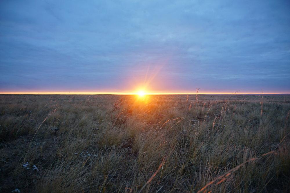 Mongolian Sunrise.JPG