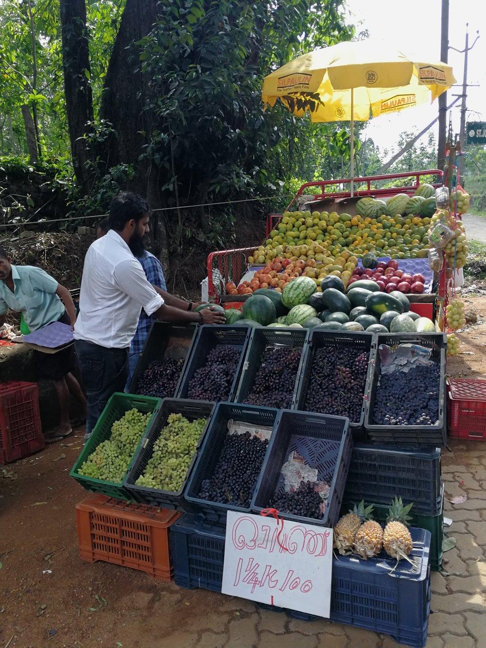 fruit-vegan-travel-india