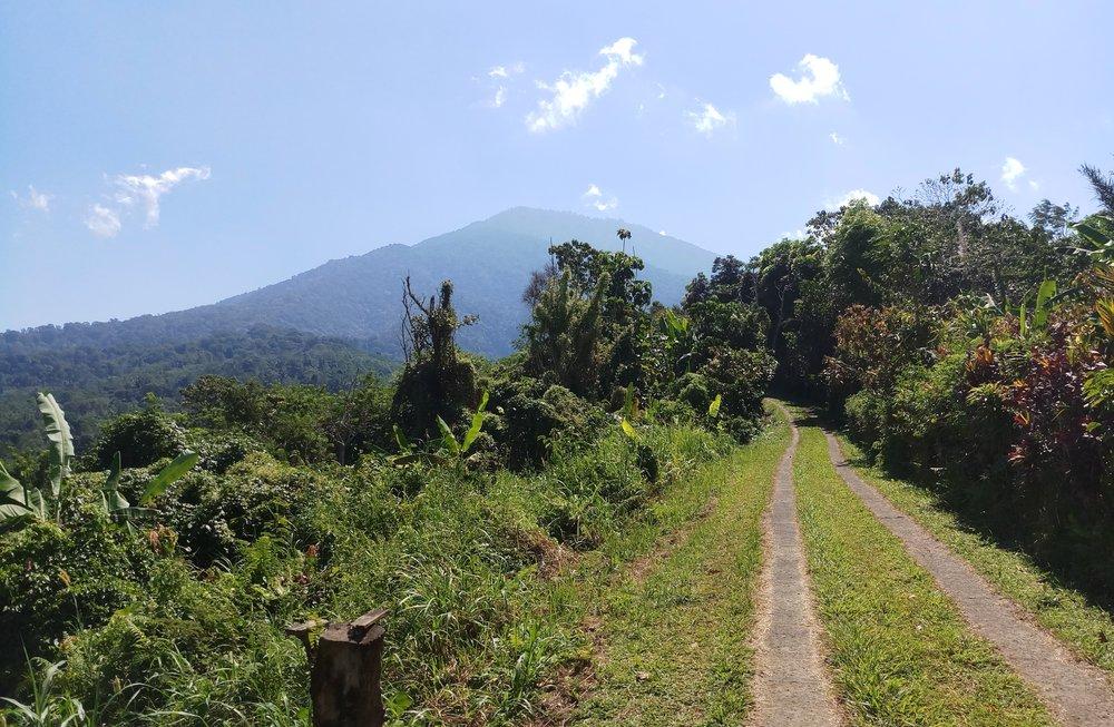 bali-travel-run