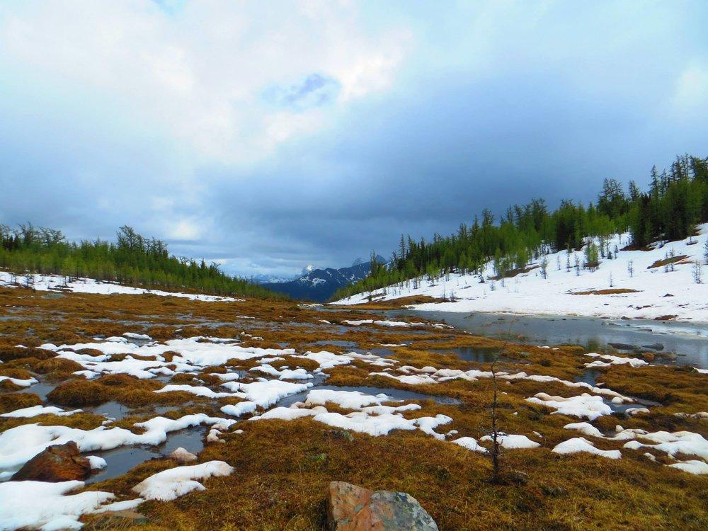 canada-hiking