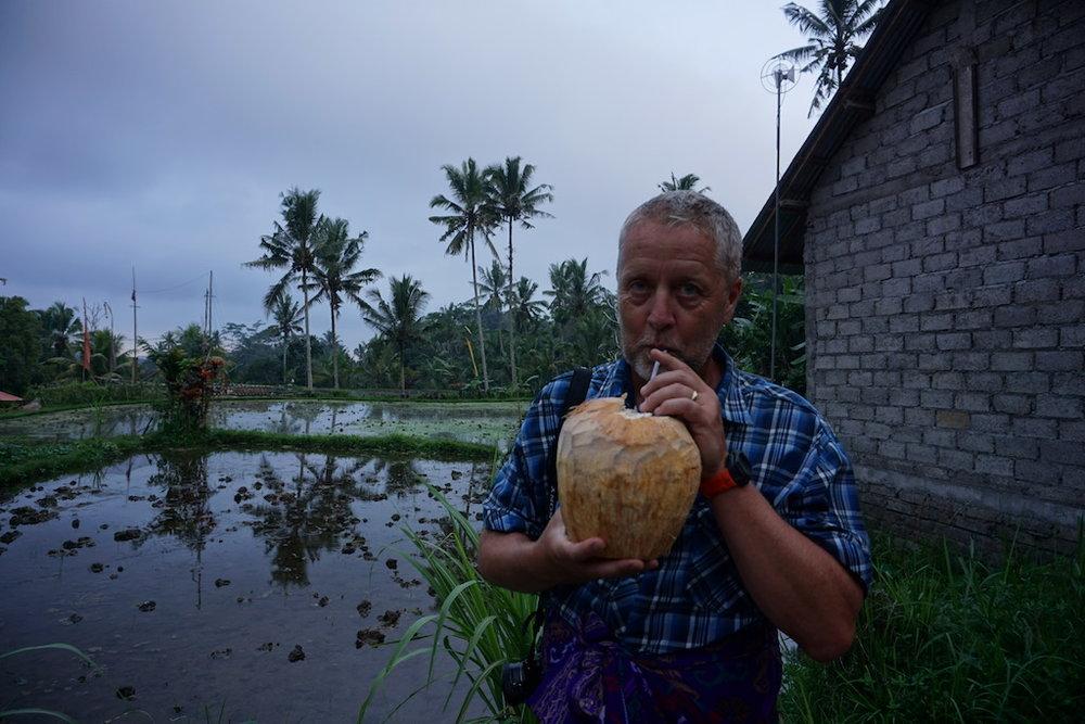 coconut-bali-travel