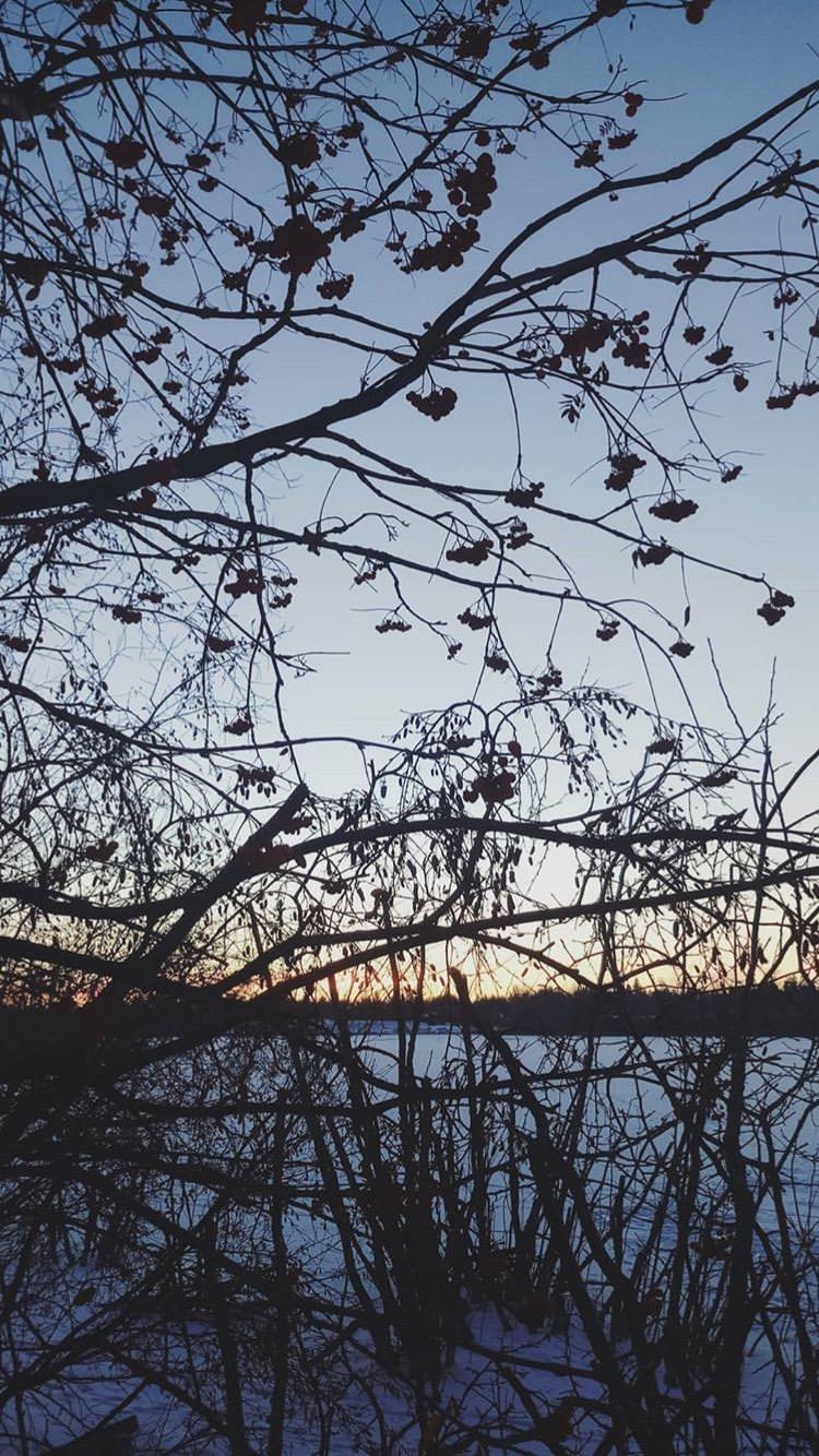 winter-trail-run