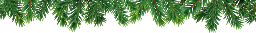 fir-branches.png