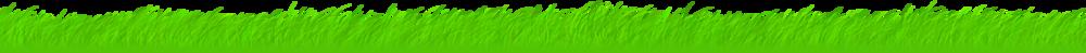 grassw2500-v2.png