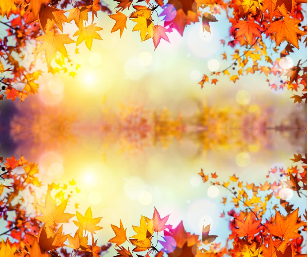 fall-at-the-lake.png