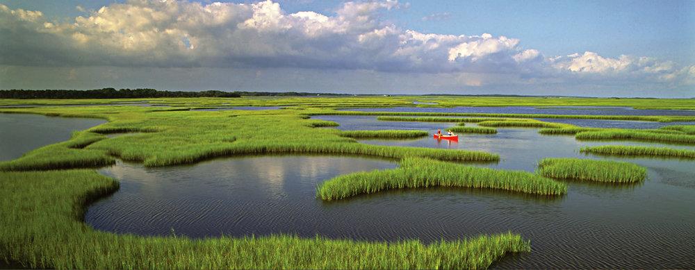 BHC - Marsh Kayak.jpg