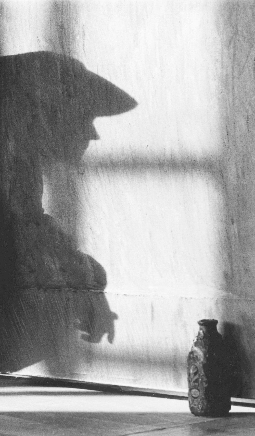 © Steven Steinman