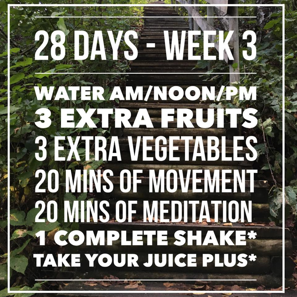 As you can see above, we add on to what we have already been doing. More water, more fruits, more veggies, and more movement and meditation. We are trying to create a standard you can maintain.