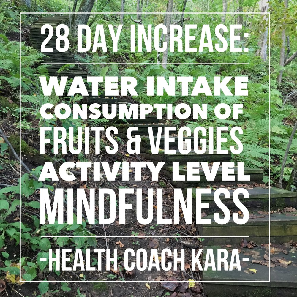 28 Day Increase is a program I created to focus on increasing healthy items and activities. In this program you assess where you are in these aspects (water intake, fruit and veggie consumption, activity level, and mindfulness). This program meets you where you already are, and you focus on adding more of these items every day. The program lasts for 28 days (or 4 weeks) and has 4 levels which last one week each. Read more about the 28 Day Increase to see if its right for you.  Goal - Increase healthy items and actives without eliminating things. Let the less healthy option fall away instead of focusing on pushing them out.