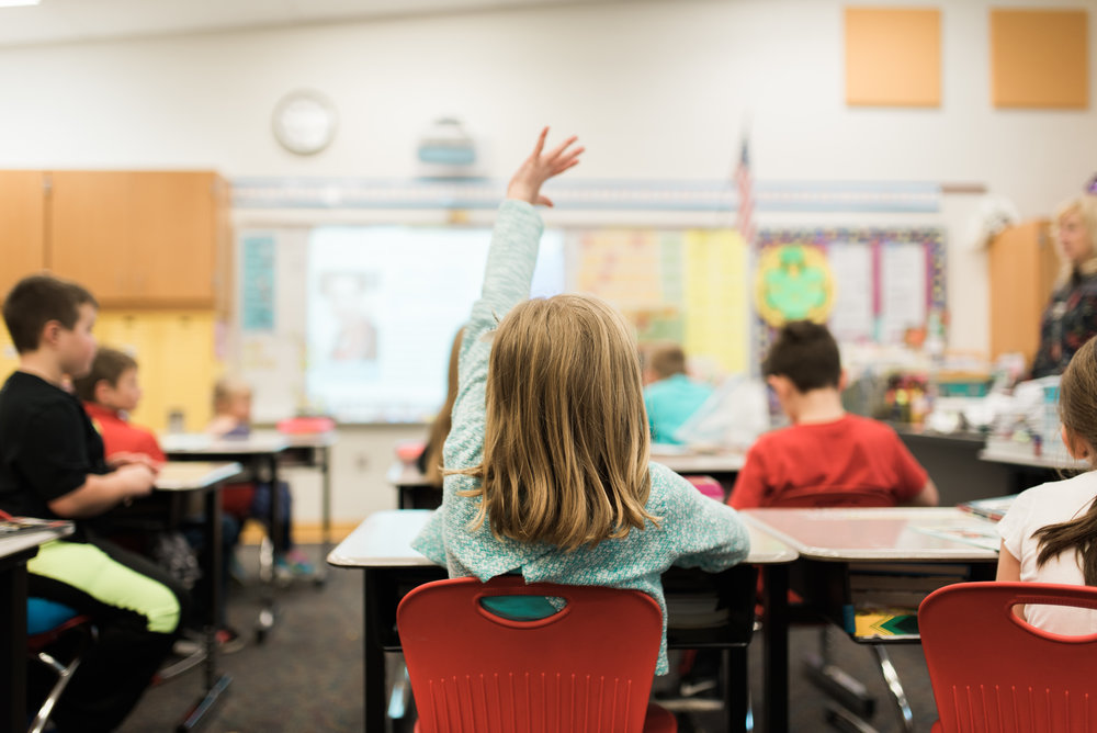 Young student raising hand in class.