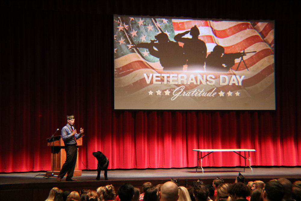 A Veteran and his service dog on stage during the Veterans Day assembly