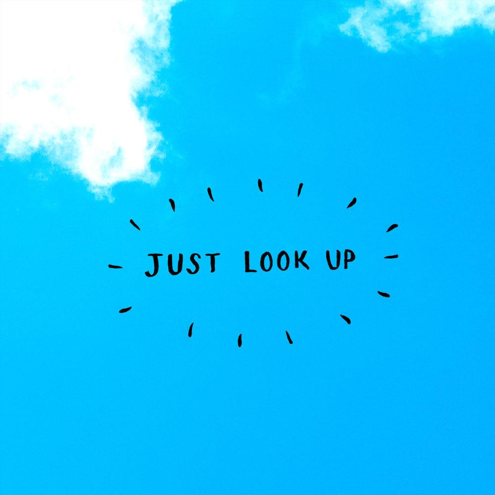 lookup_v2_D.jpg