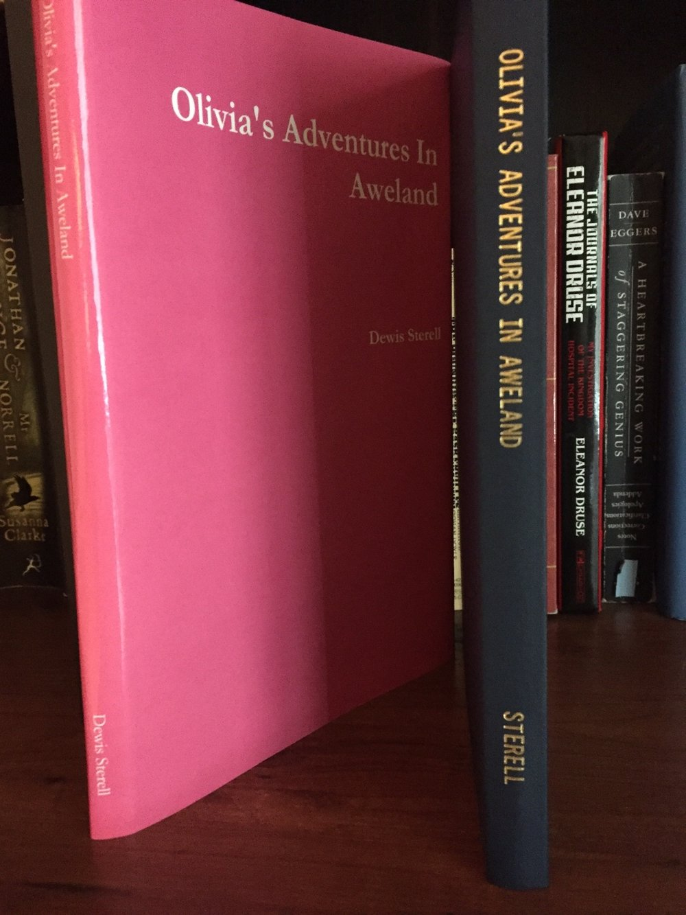 olives-adventures-in-aweland-secret-diary-journal