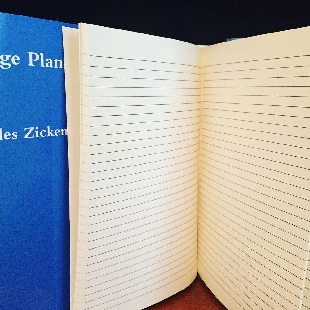 large-plans-secret-diary-journal