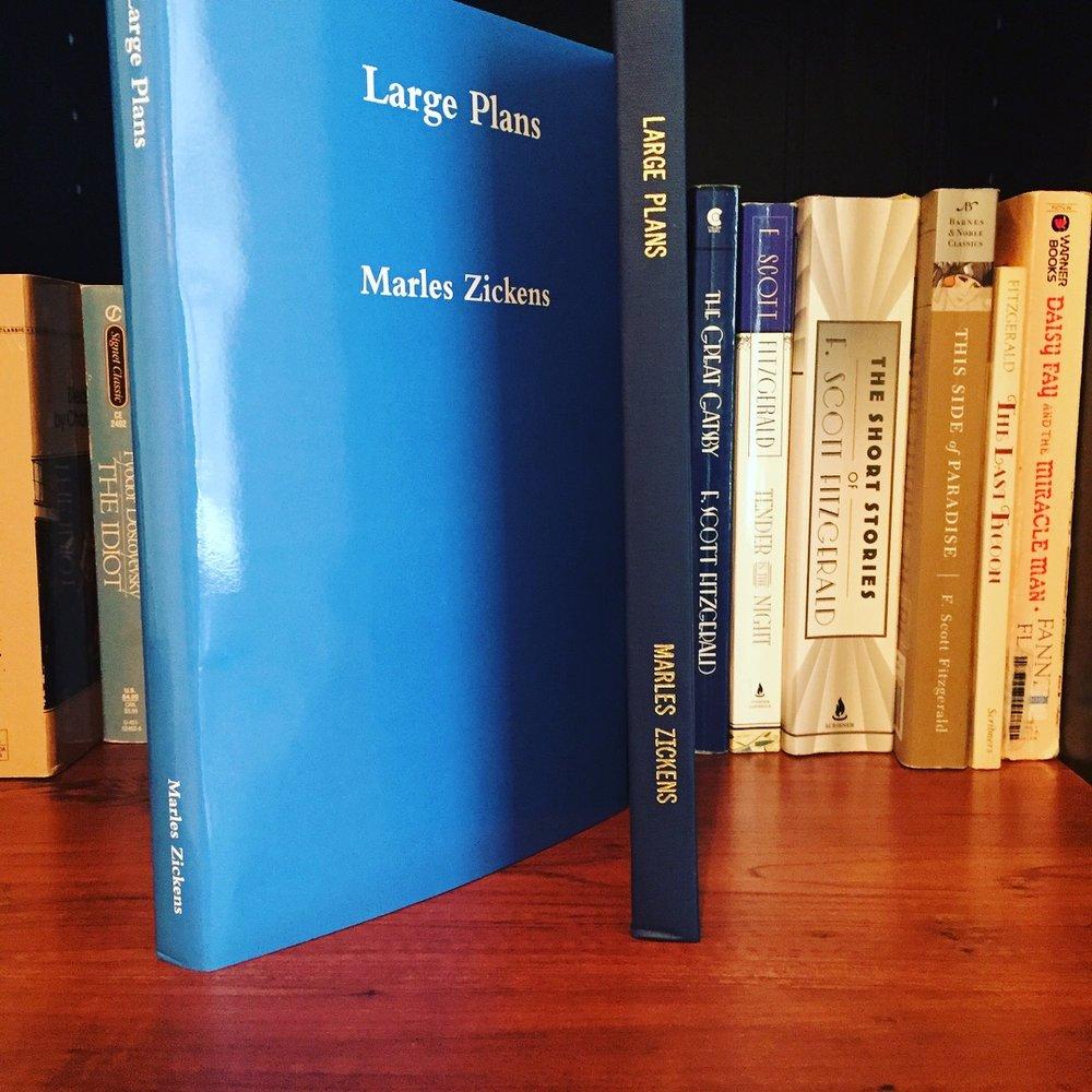large-plans-secret-diary