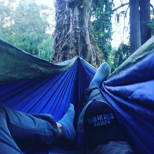Post camp nap.