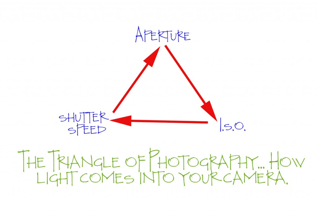 Aperture, Shutter Speed, and ISO.  Three things that make or break your image.