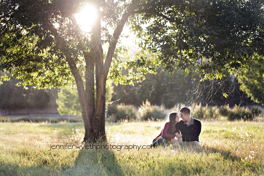 lovers snuggle under a tree in the golden light.