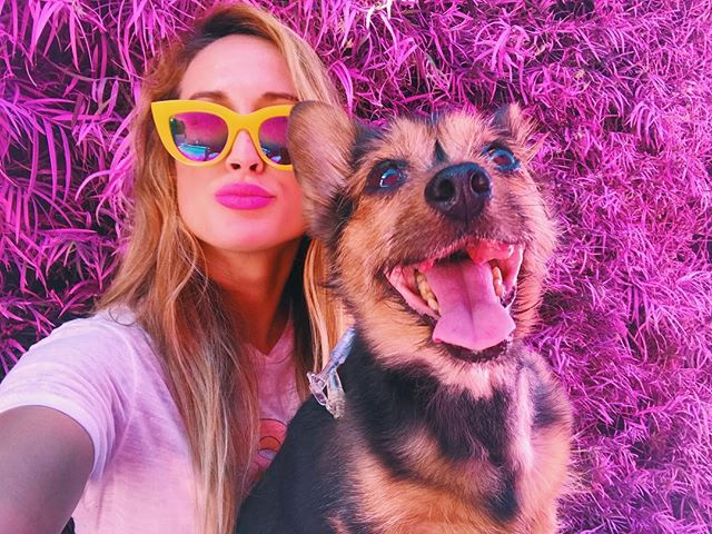 Even with a mouth full of cancer and a feeding tube  she's still the happiest dog babes in the world.. and the love of my life 💜💜💜💜#fuckcancer #dogcancer #dogs #loveyoualways #thepinkhouse #LA #pinkhouse #hellosaturn #themostfamousartist