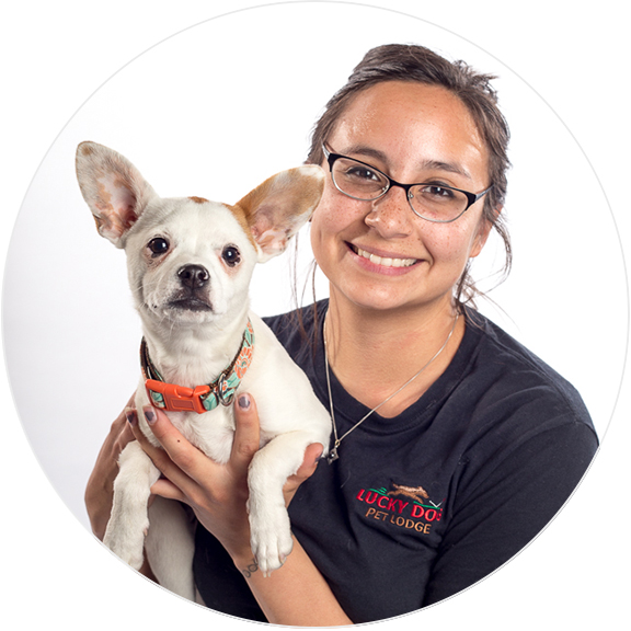 Alicia Title Hello! My name is Alicia and I've been working with Lucky Dog since September of 2016. Growing up, my family always had a dog around. I became familiar with many different breeds of dogs, but I found my best friend in a pit bull named Molly. I finally began working with animals in 2011 at a doggy daycare/boarding facility, where I fell in love with caring for dogs, cats and other pocket pets. It's been six years and I still have not found a more rewarding job than this. Every day I look forward to coming into work and making it the best day possible for my fur friends! At the moment I only own one evil cat named Rupert, but I hope to someday soon find him a canine sibling he will tolerate. Until then I'll get my dog fix by loving and caring for all of yours!
