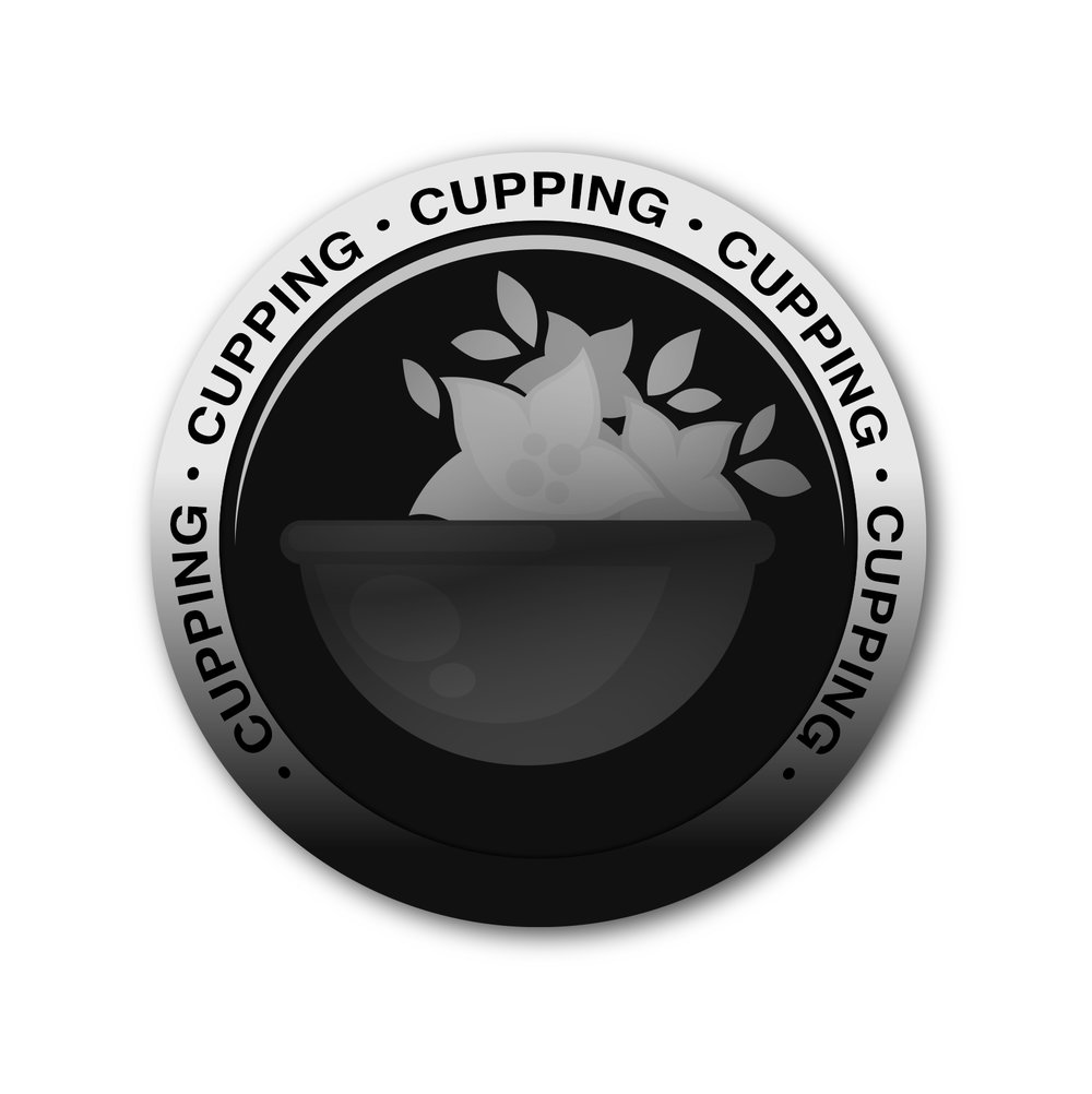 Cupping-therapy-Longmont.jpg