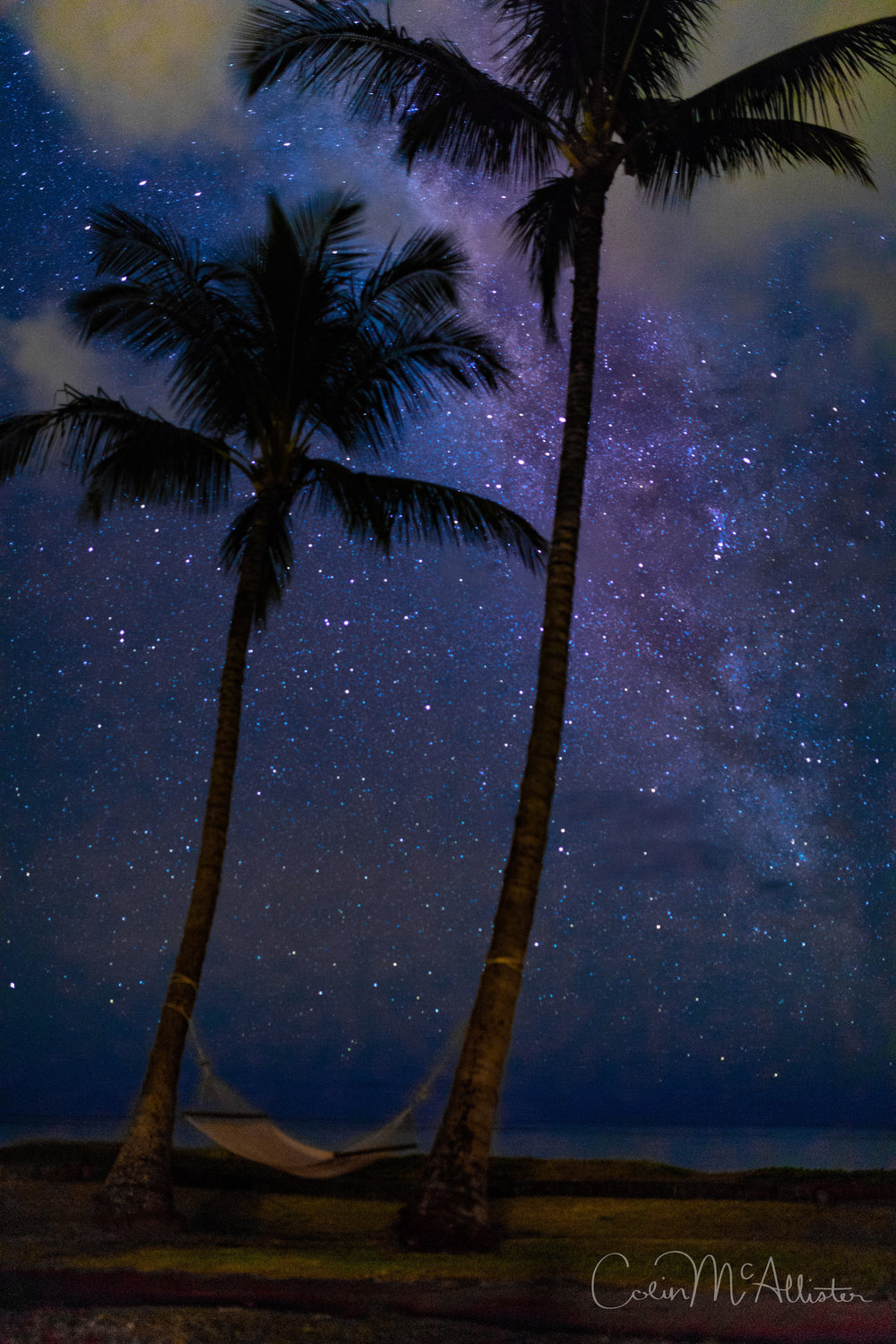 Milky Way with Palm Trees!