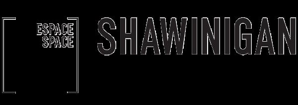 Logo Espace Shawinigan