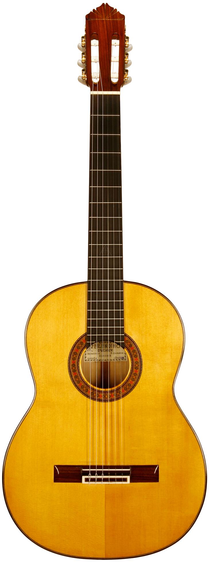 guitar_fr_lg_163.jpg