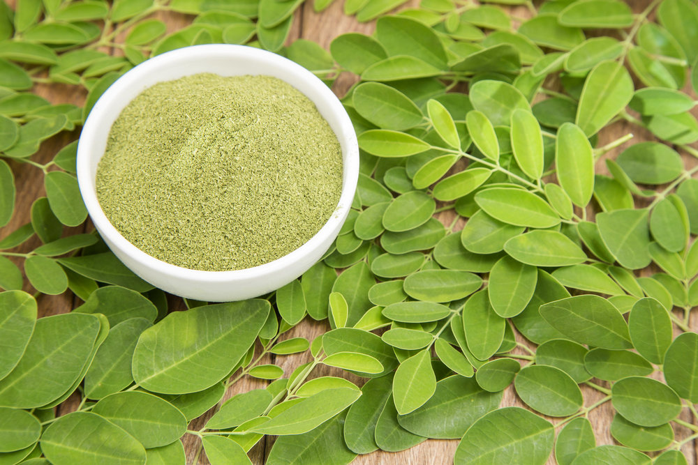 Moringa leaf powder, buy My Moringa at www.mymoringa.ca