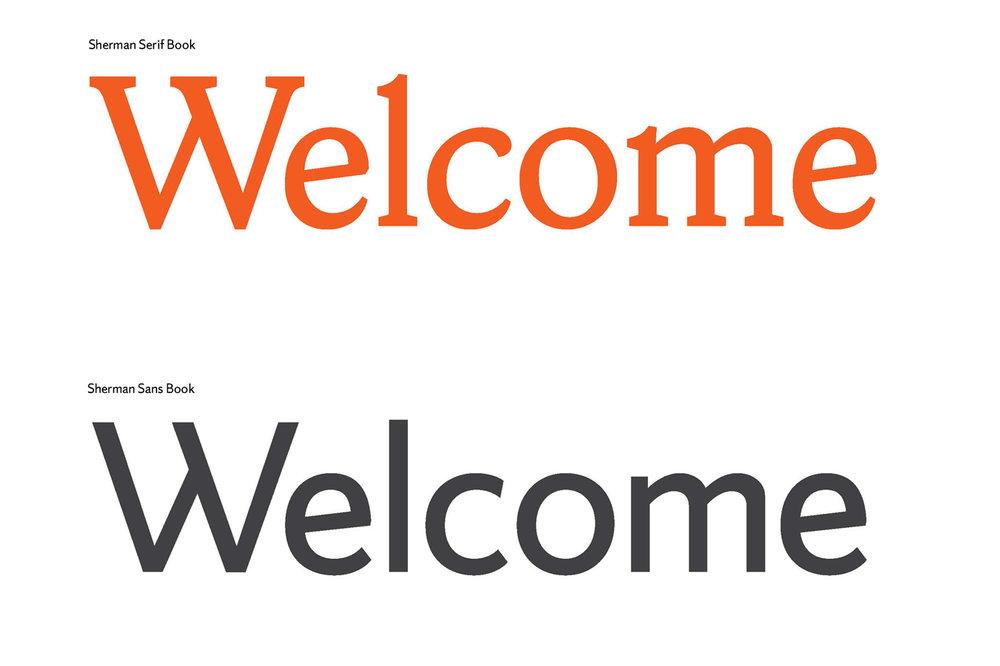 Vista Sans Book Italic Font