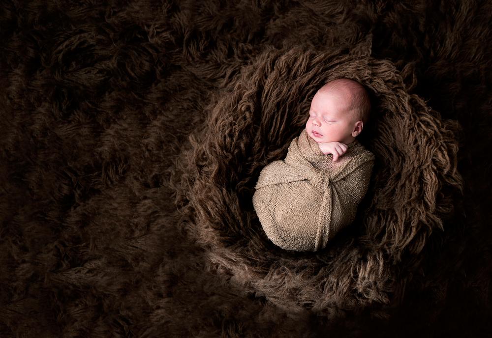 Round Rock Texas Newborn Photography
