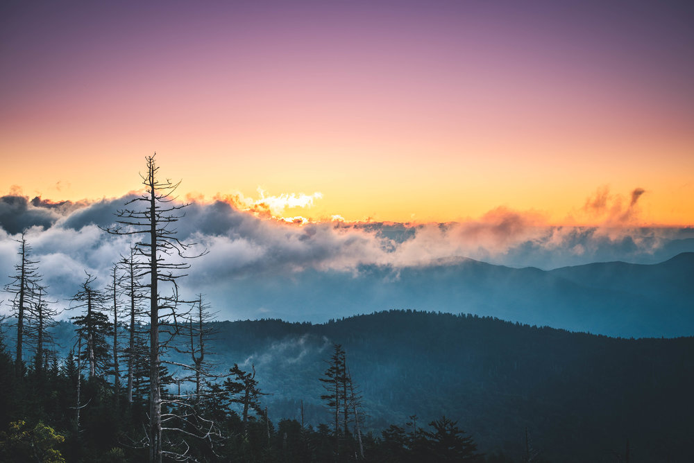 Clingman's Dome is the highest point in the Smokies and we got up early on the first morning to catch sunrise peaking over the clouds rolling off the mountain beside us.  This location is the place to get layers and layers that set the Smokies apart when it comes to mountain ranges in the US.