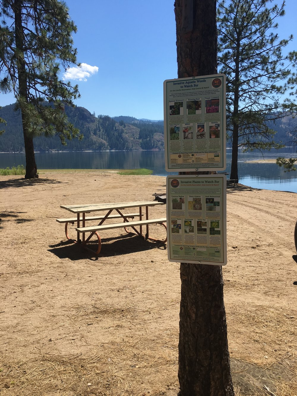 Land Operations through a grant with WSU extension, provided signage to highlight some new invader species to be on the look out for across the Reservation. Signs were installed in public areas such as campgrounds, meeting areas and boat launches.
