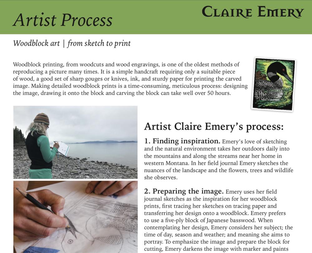 Artist's Process