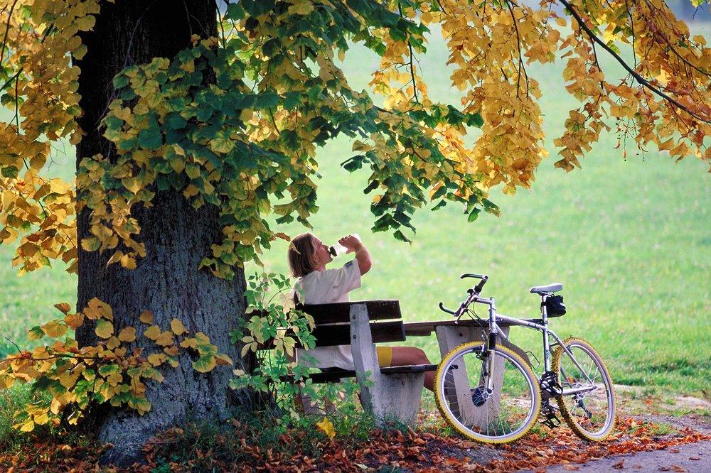 Bike trinkt auf bank Img0013 bb_shp2500px_JPGQU4_real621KB.jpg