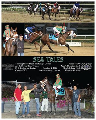 Sea Tales Win.jpg