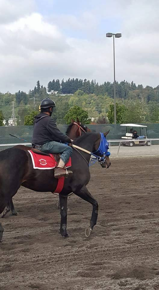 Get Goin Matty (WA) Emerald Downs