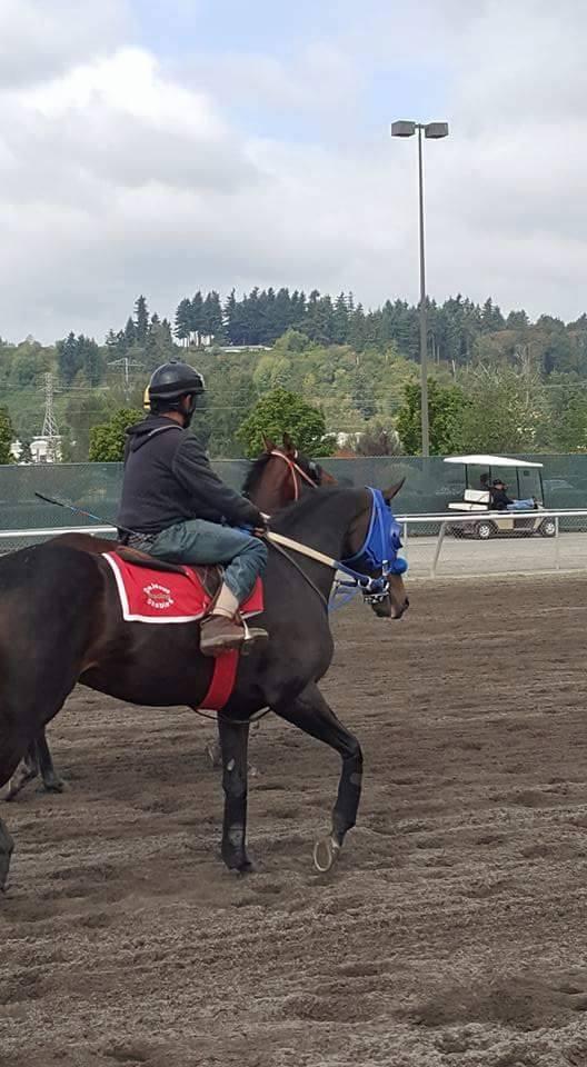 Get Goin Matty (WA) Track: Emerald Downs Race Agent: Matt Robinson mrobinson@teamtbsx.com