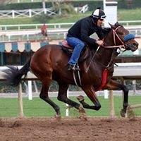 Smarty Moon (CA) Track: Golden Gate Race Agent: Matt Robinson mrobinson@teamtbsx.com