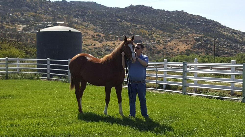 Making a Myth (GB) Track: Santa Anita (CA) Race Agent: Matt Robinson mrobinson@teamtbsx.com