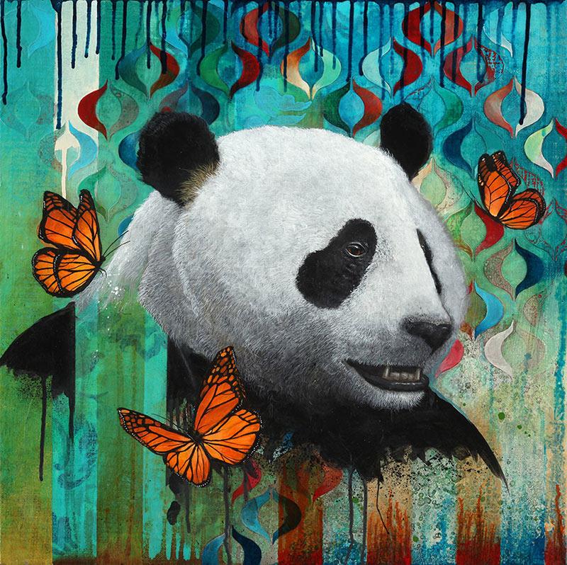panda_800.jpg